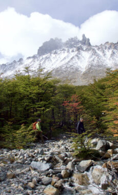 Chile patagonia aysen cerro castillo nuevo zealandes valley beech forest mountain view walkers