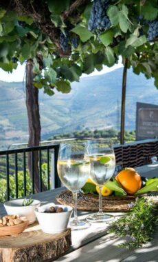 Portugal douro wine views c hotel