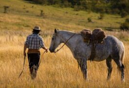 Argentina calafate estancia nibepo aike gaucho horse