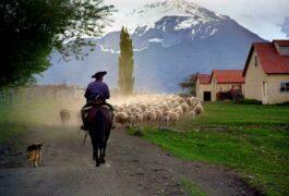 Argentina patagonia estancia nibepo aike c hotel