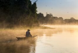 Brazil amazon man on boat sailing the river in the early morning
