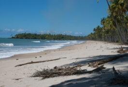 Brazil bahia boipeba palm fringed wide beach left hand curve