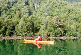 Chile aysen queulat fjord kayak