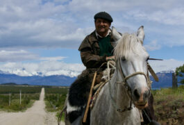 Chile patagonia carretera austral gaucho riding along road lago carrera