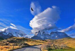 Chile patagonia paine condors over torres del paine