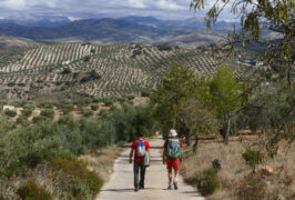 Spain andalucia almedenilla salto caballo circular c pura aventura 19