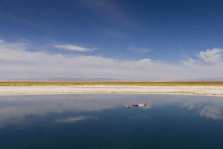 Chile atacama desert alto atacama lodge man floating in lagoon
