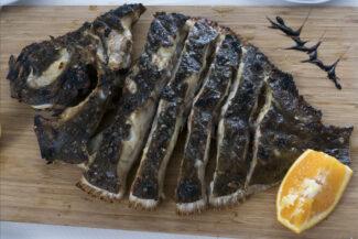 Portugal alentejo rota vicentina zambujeira fish turbot