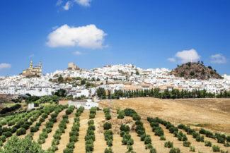 Spain andalucia cadiz grazalema olvera c