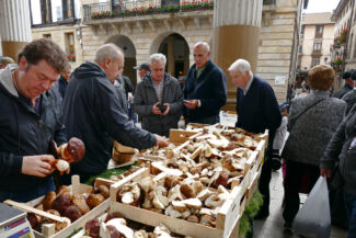 Spain basque ordizia market boletus 3 c david pura
