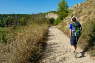 Spain camino 7 part guide birdsong
