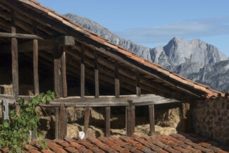 Spain cantabria picos de europa inn to inn caecho potes agero barn cat