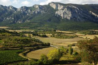 Spain rioja vineyards near Laguardia copyright chris bladon2