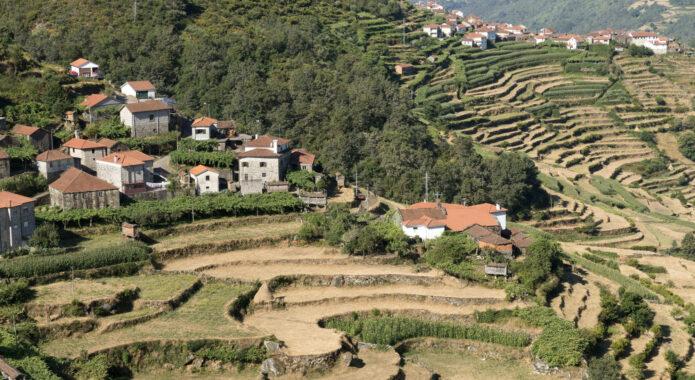 Portugal peneda sistelo hike porto covo padrao