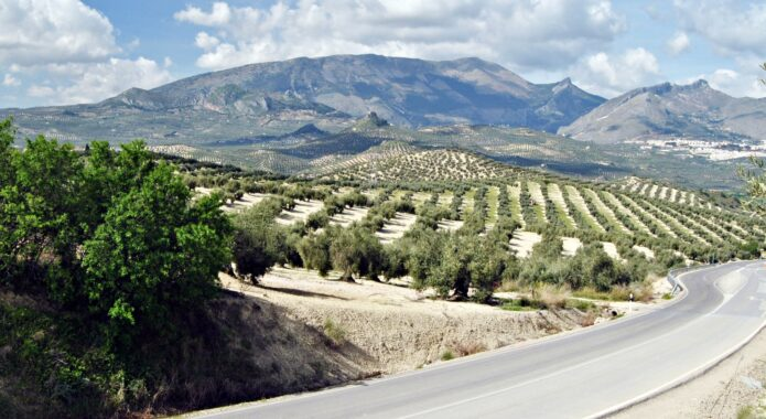 Spain andalucia road driving shutterstock