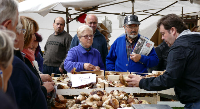 Spain basque country ordizia market shopping for mushrooms