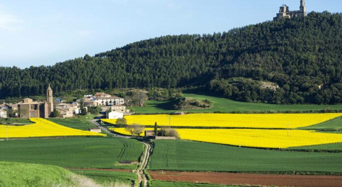 Spain navarre rioja inn to inn sorlada san gregorio c dmartin