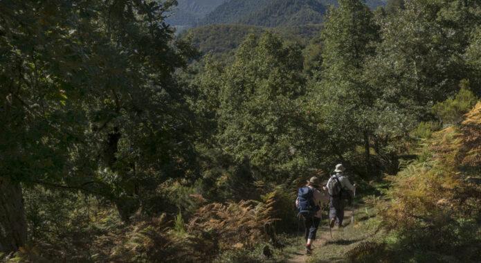 Spain picos inn to inn liebana day 2 village hikers dobarganes 3 c diego