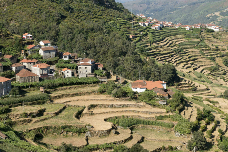 Sistelo's timeless terraces
