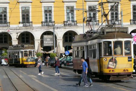 Lisbon like a local