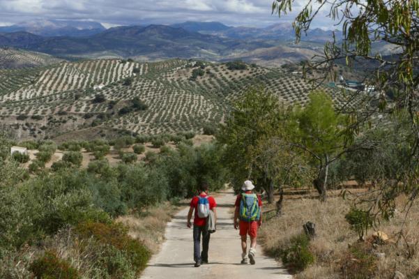 Walking in Andalucía