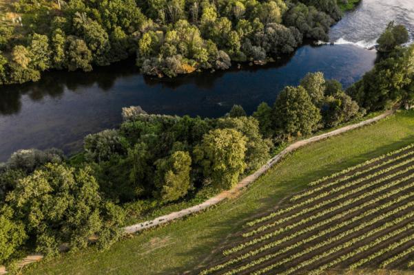 Portugal minho ponte de lima quinta do ameal vineyards river c ameal