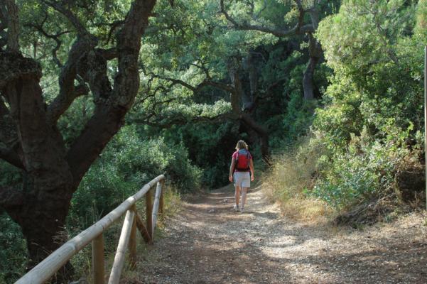 Spain andalucia aracena trail