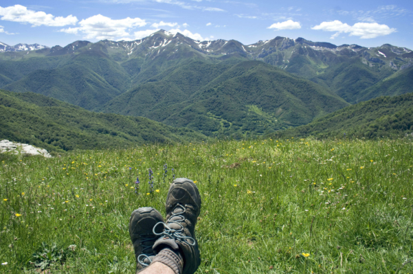 Spain picos de europa liebana meadow c dmartin