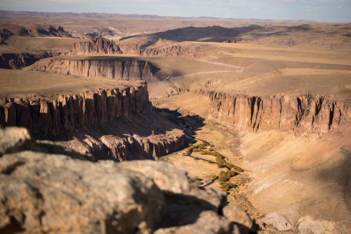 Argentina patagonia parque cañadon pinturas guanaca viewpoint c fabian bezunartea rewilding argentina