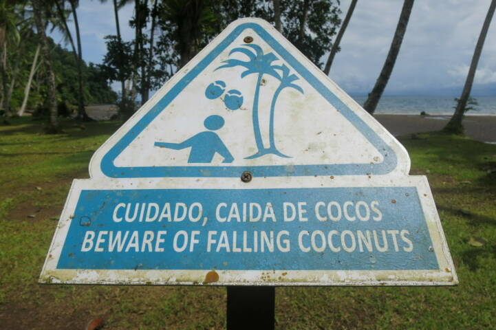 Costa rica osa golfo dulce coconuts sign c thomas power pura aventura