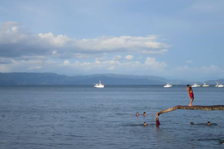 Costa rica osa peninsula diving board puerto jimenez c thomas power pura aventura