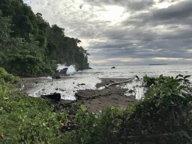 Costa rica osa peninsula drake bay beach 2 c thomas power pura aventura