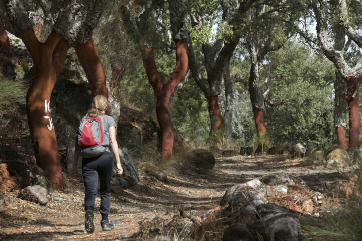 Portugal alentejo marvao galegos hike 8