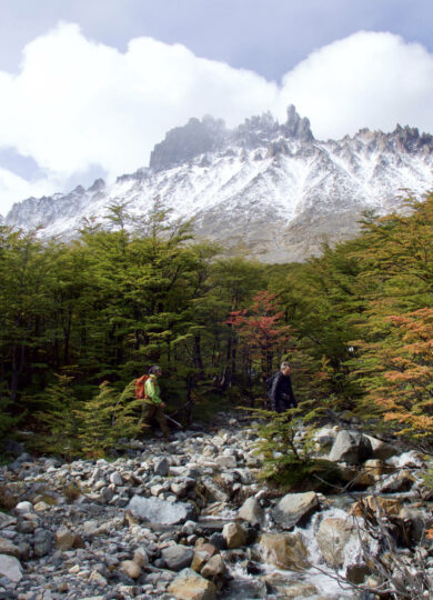 Chile patagonia aysen cerro castillo nuevo zealandes valley beech forest mountain view walkers