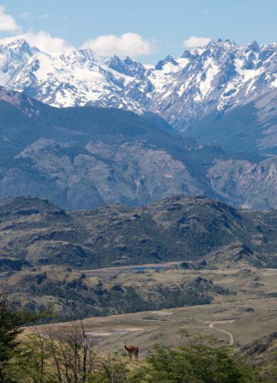 Chile carretera Park Patagonia1 copyright Aaron Millar