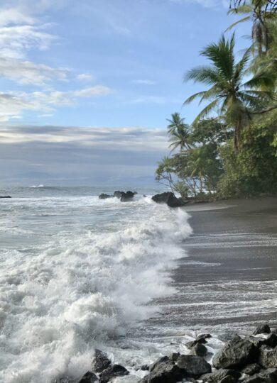 Costa rica osa peninsula drake bay beach c thomas power pura aventura