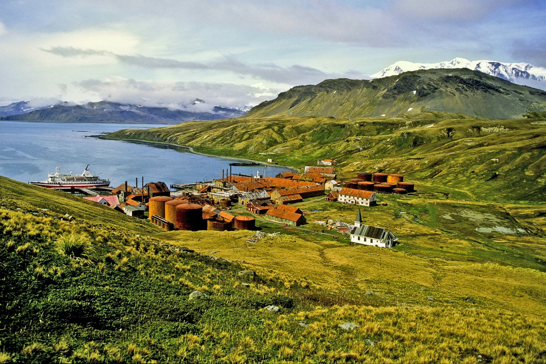 Antarctica south georgia grytviken whaling station c adeliepenguin