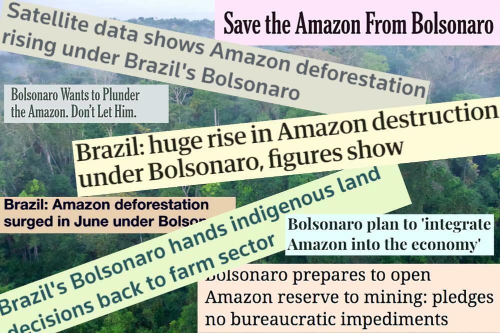 Brazil amazon bolsonaro 1