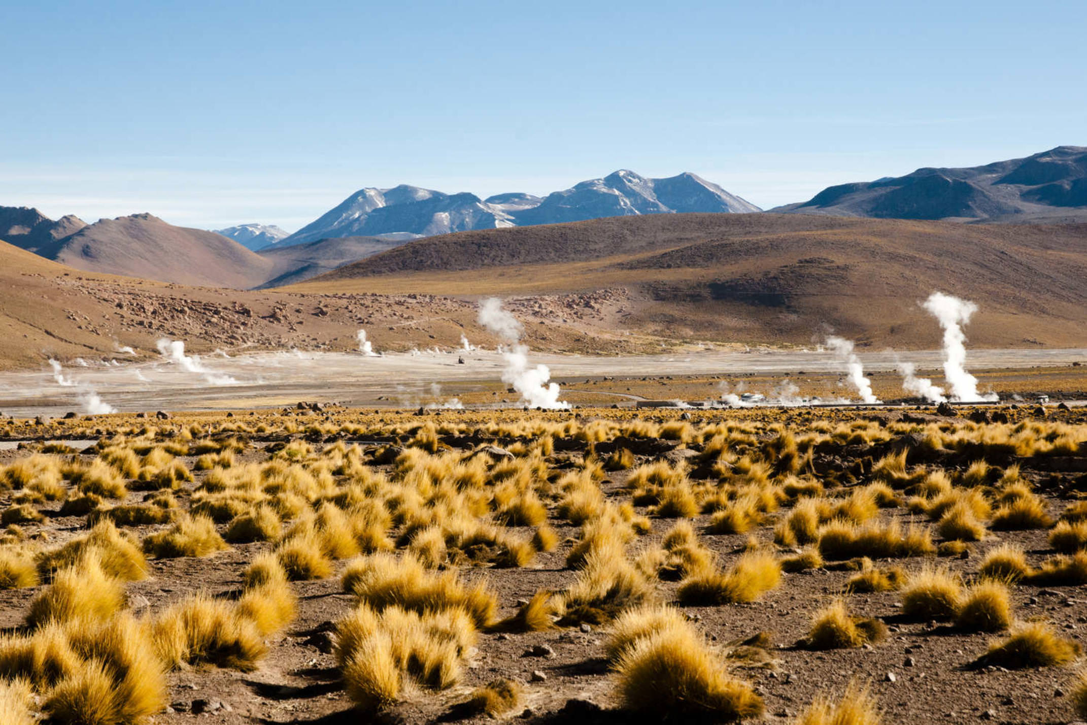 Chile atacama el tatio geyser field