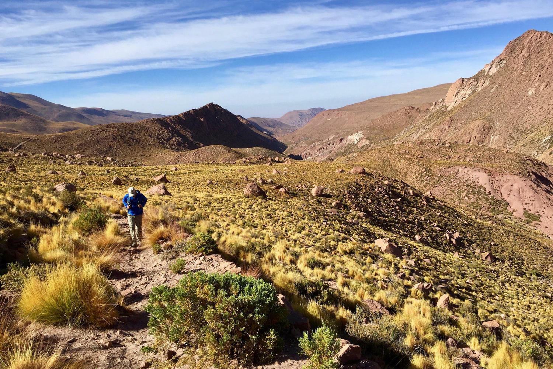 Chile atacama high pampa walker c camilo silva pura aventura jpg