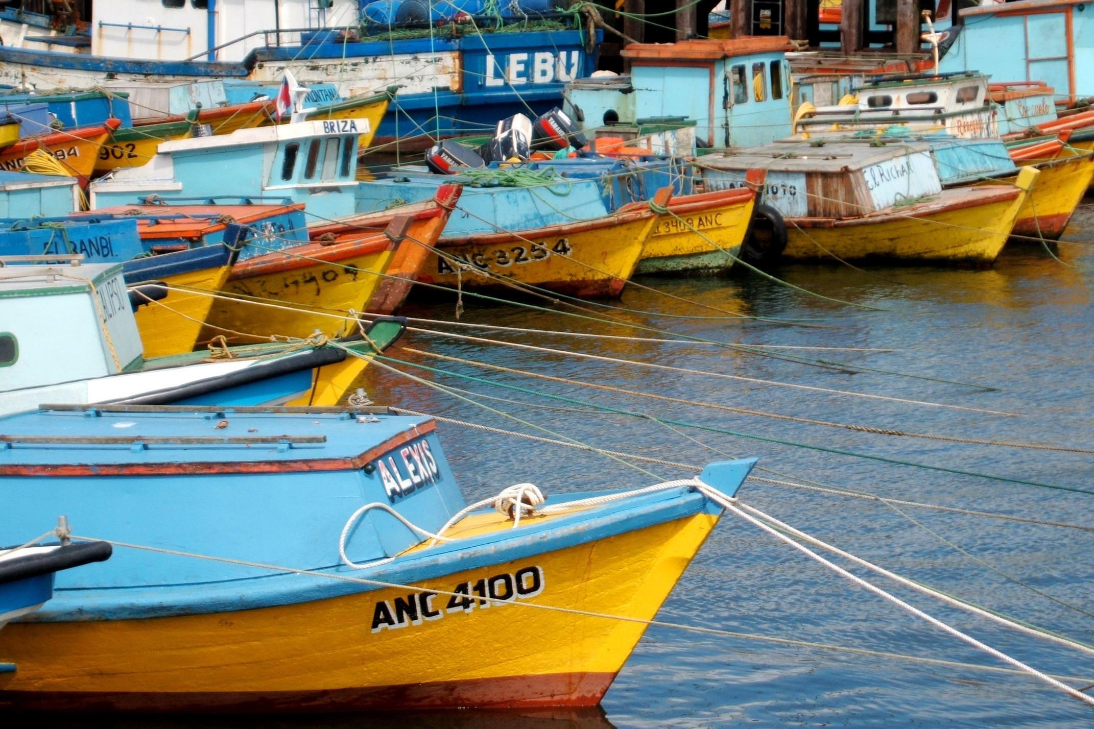 Chile chiloe grande island fishing boats moored