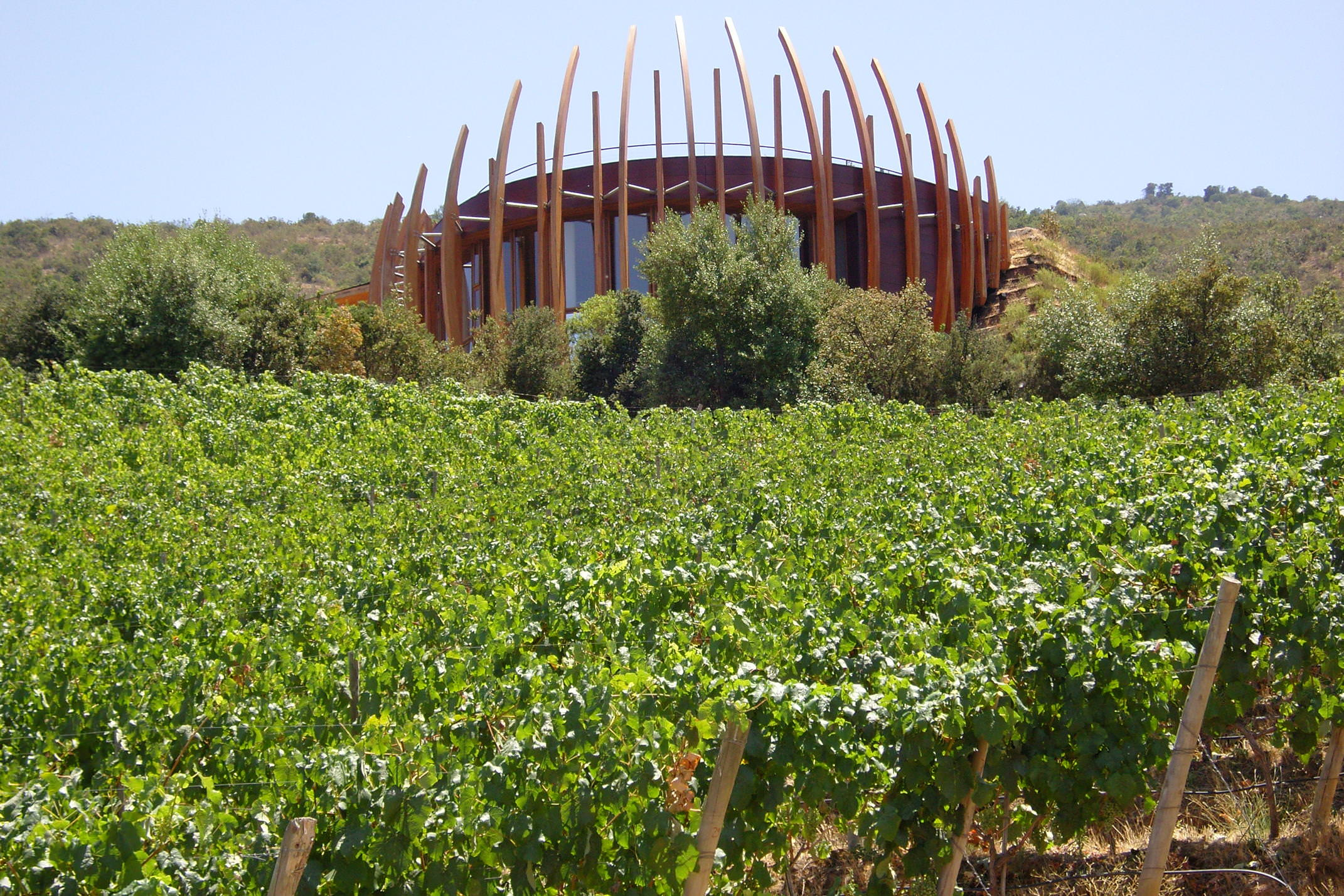 Chile winelands lapastolle winery