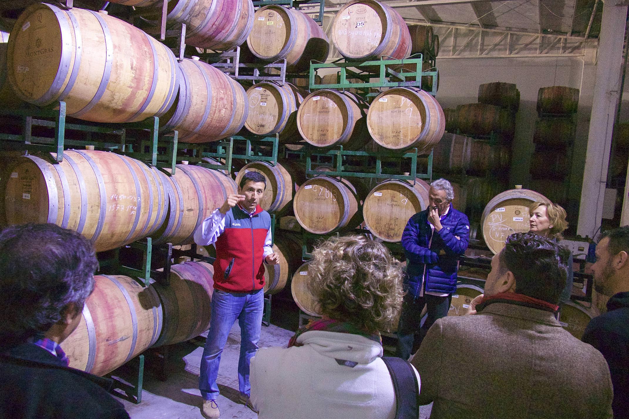 Chile winelands santa cruz montgras winery discussing the barrels