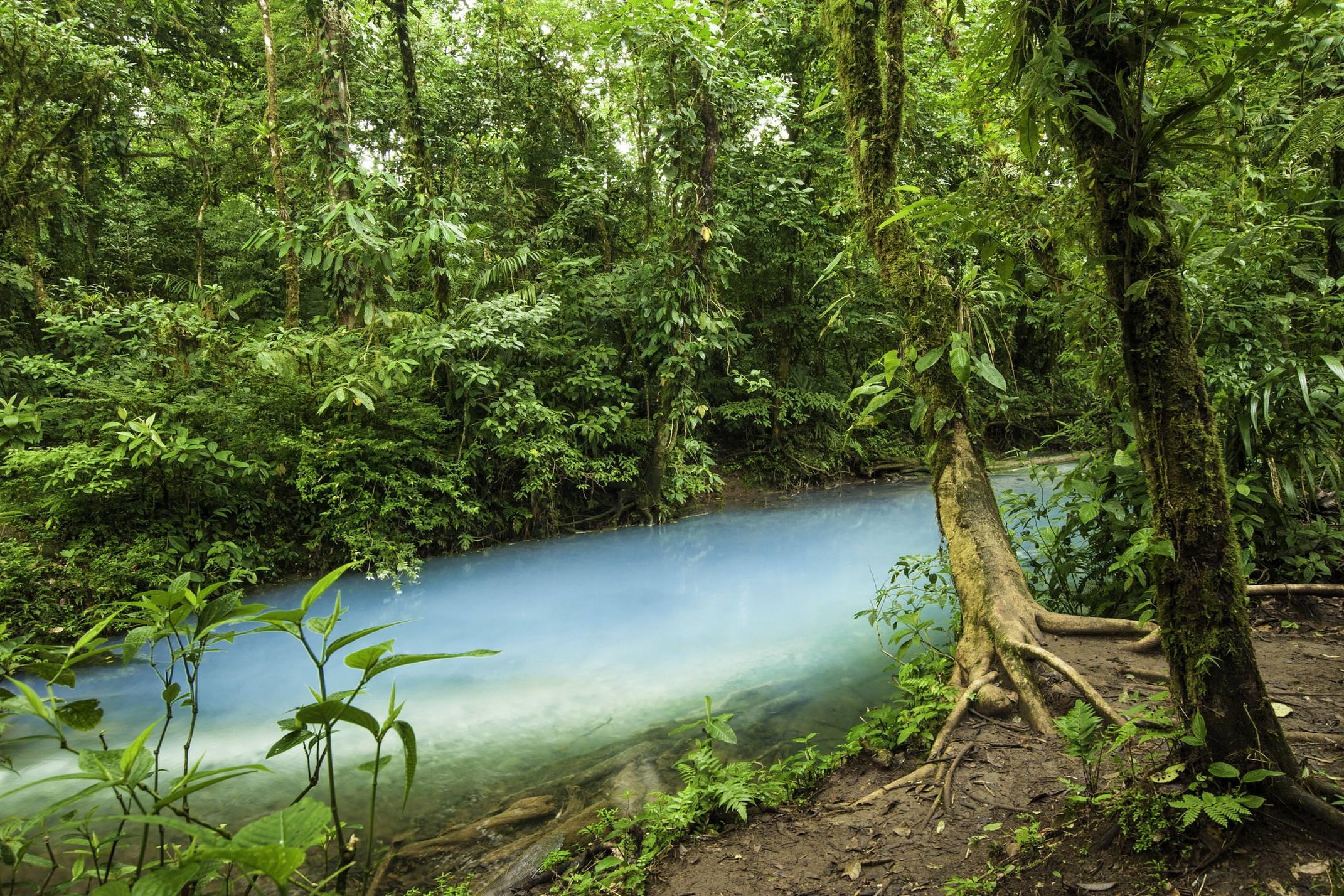 Costa rica tenorio rio celeste coloured stream william berry