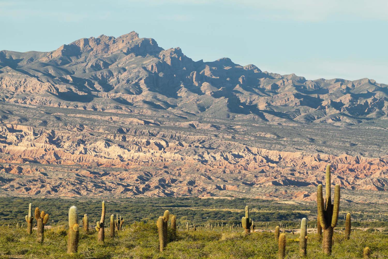argentina-salta-los-cardones-national-park-in-northern-argentina.jpg