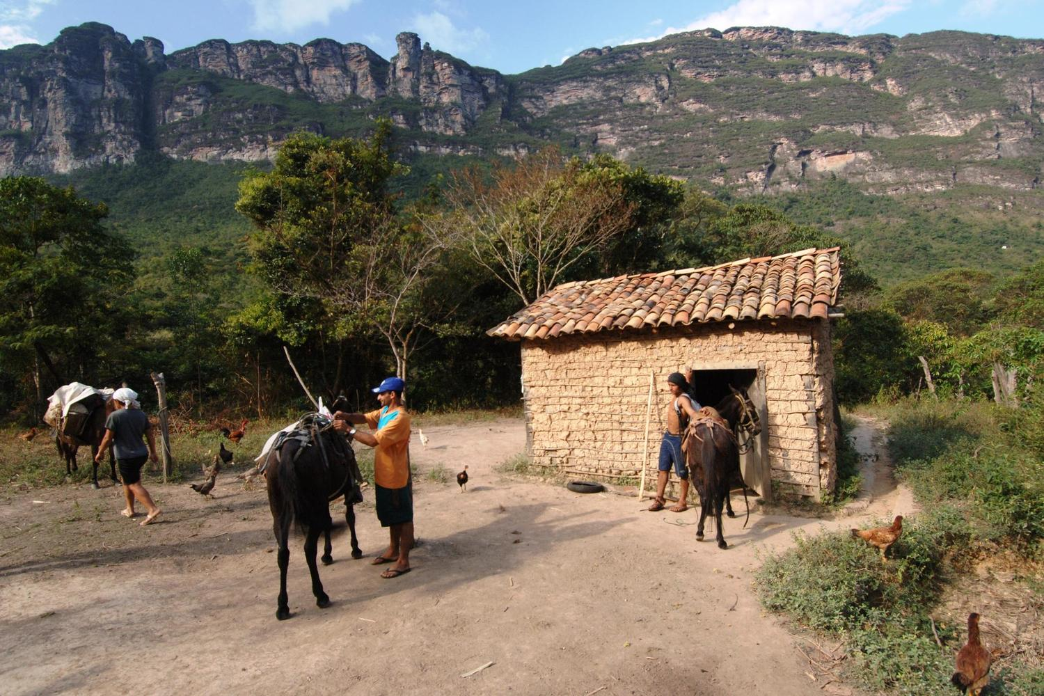 Loading up the mules in the Chapada