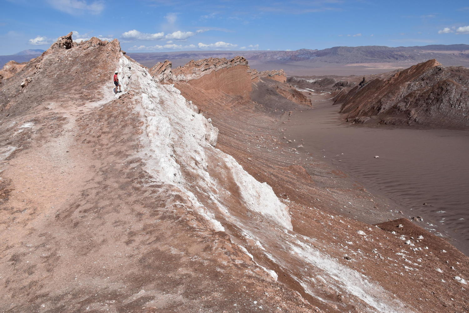 The martian landscapes of the Atacama