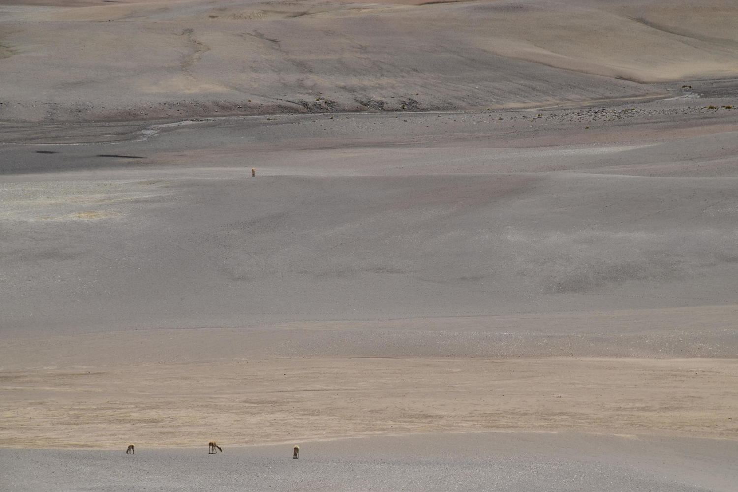 The wide open landscapes of Chile's Atacama Desert