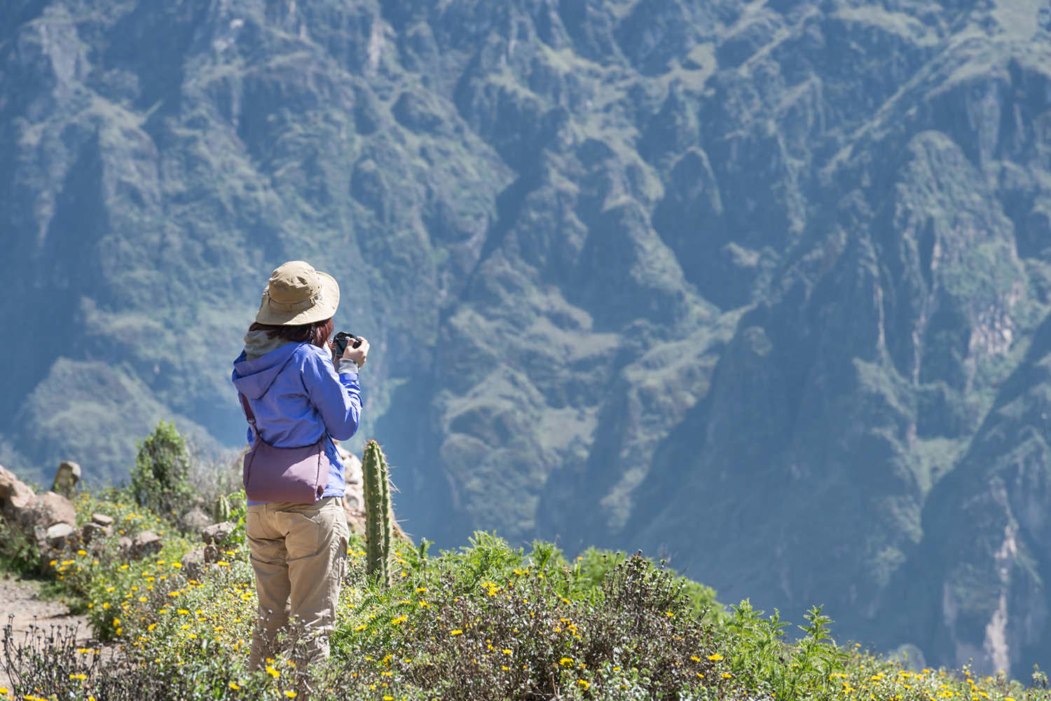Enjoying the natural scene as a reward after achieving Colca Canyon's summit