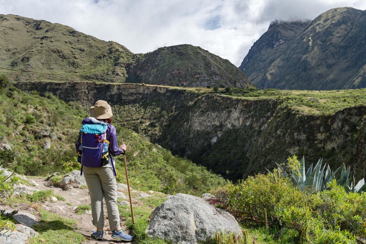 peru-inca-trail-travallers-walking-on-the-inca-trail-km82-machu-picchu-peru